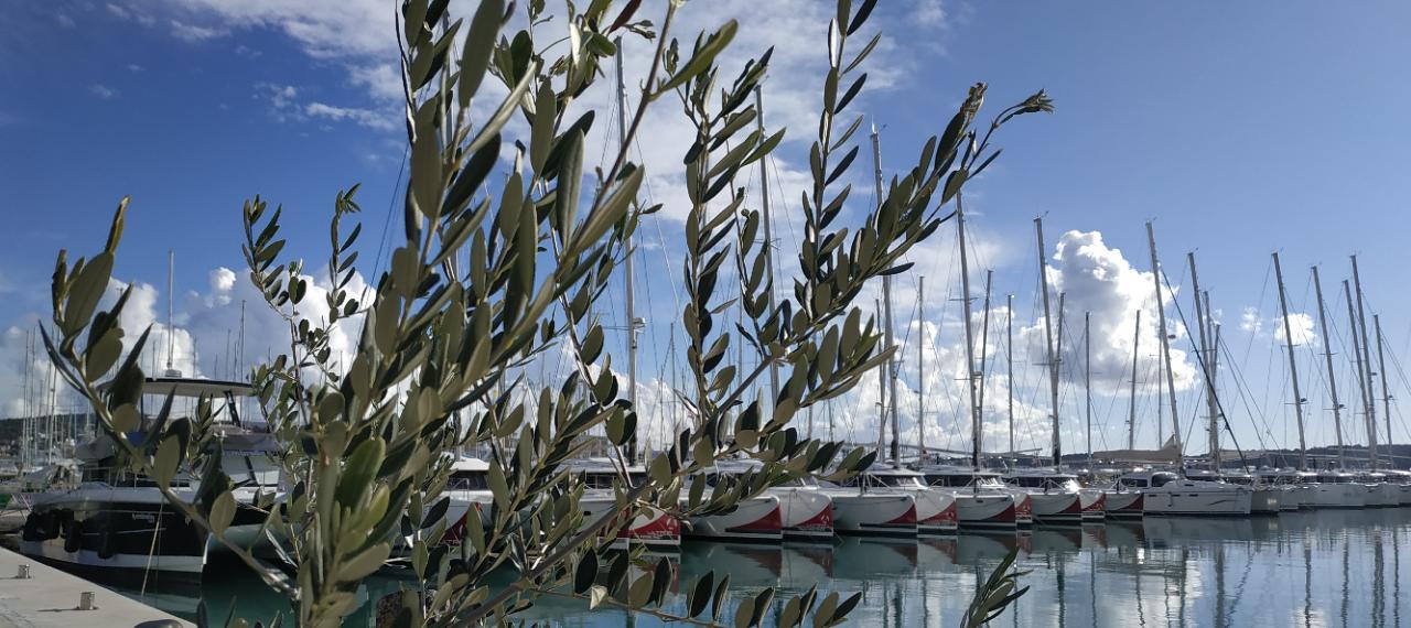 Catamaran-Fleet-Investment-Croatia